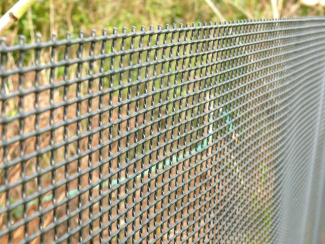 Finding Best Wireless Dog Fence